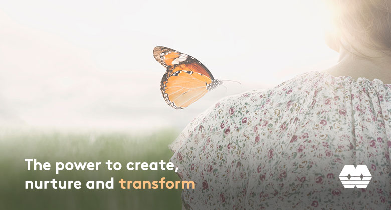 Create, nurture and transform